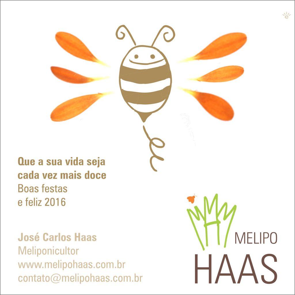 MelipoHaasNatal2015